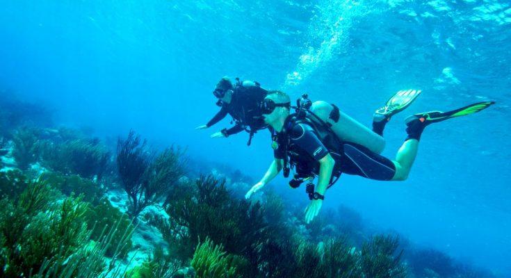 Maak een proefduik op Aruba